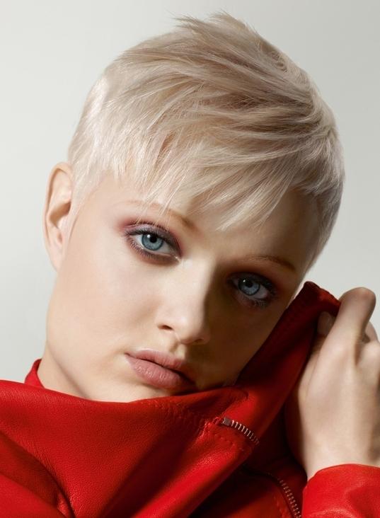 Pixie Haircut Ideas For Spring Summer 2017 Women Hairstyles